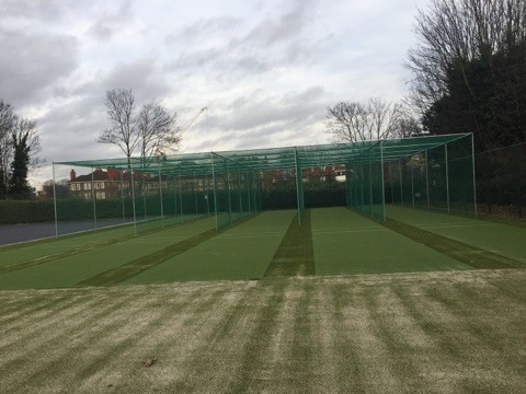 Artificial grass cricket wickets with netting at Club Des Sports