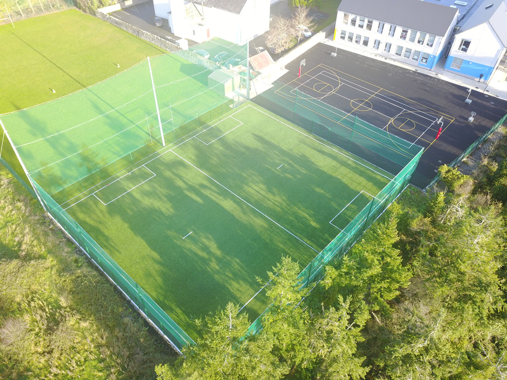 carrig national school pitch