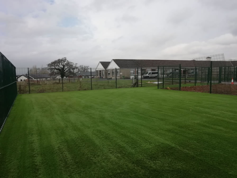 Artificial grass pitch Limerick