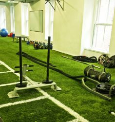PST Sport Synthetic Grass for Gyms Image14