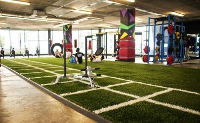 PST Sport Synthetic Grass for Gyms Image3