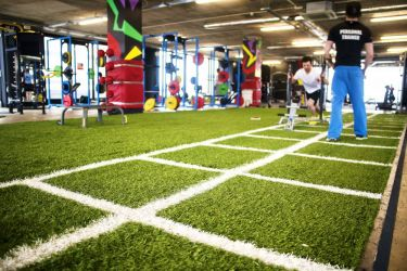 PST Sport Synthetic Grass for Gyms Image6